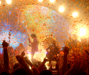 The_flaming_lips_frenzy