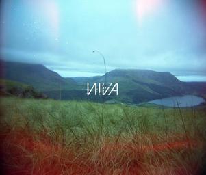 Niva__dd2