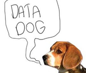 Data_dog_dogdatadog