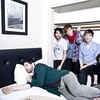 Foals