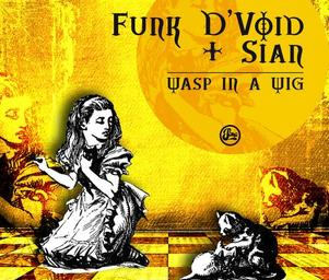 Funk_dvoid_sian_a_wasp_in_a_wig