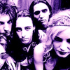 Lords_of_acid_violet