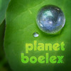 Planet_boelex_avatar