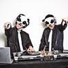 The_white_panda_img_2535
