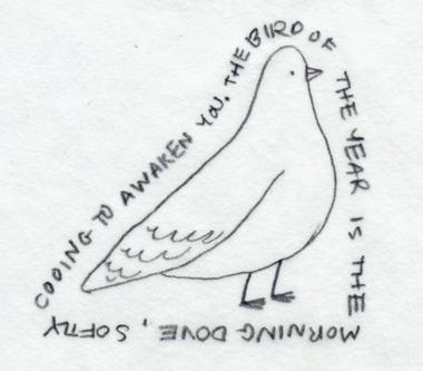 Birdoftheyear_1