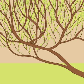Tree_all_2