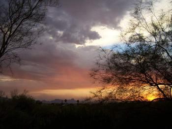 Tucsonpic1