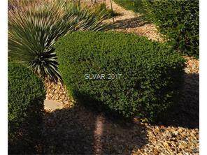 2809 Swallow Point Circle Las Vegas, Nevada 89117