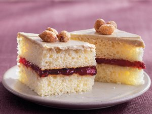 Peanut Butter and Jelly Cake Bites