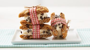 Oatmeal Raisin Cookie Ice Cream Sandwich