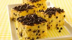 Chocolate Chip Snack Cake Recipe