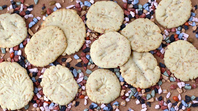 Fossil Cookies recipe - from Tablespoon!