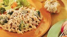 Noodles and Ground Beef Alfredo Recipe
