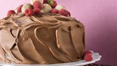 Chocolate Mousse-Raspberry Cake Recipe