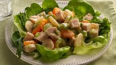 Turkey Salad with Fruit Recipe