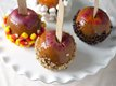 Deluxe Dipped Apples