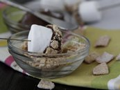 Simple Smores on a Stick