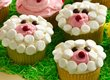 Lamb Cupcakes