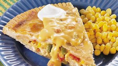 Fiesta Chicken Empanada