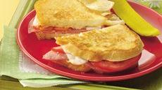 Grilled Salami Sandwiches Recipe