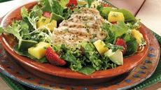 Grilled Margarita Chicken Salad Recipe