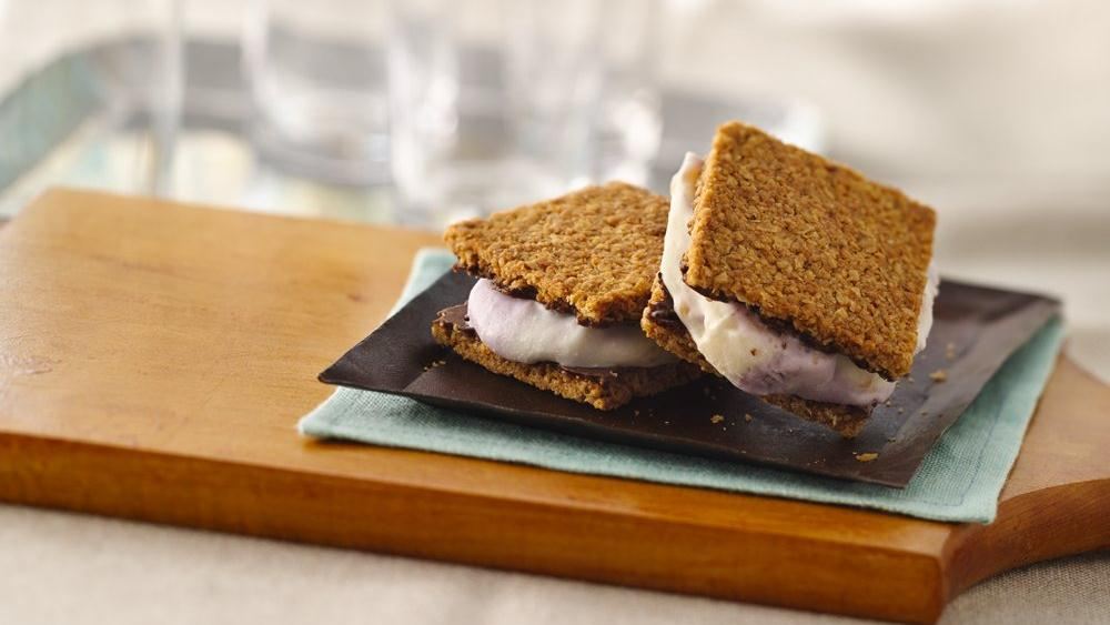 Fruity Frozen Yogurt Ice Cream Sandwiches