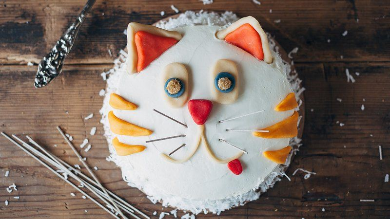 Cat Birthday Cake For Cats Recipe Image Inspiration Of And