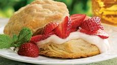 Strawberry-Custard Shortcakes Recipe
