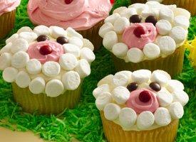 Cordero Cupcakes