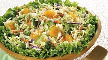 Zesty Vegetable Coleslaw