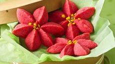 Raspberry Poinsettia Blossoms Recipe