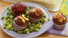 Crazy Critter Cupcakes Recipe