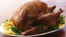 Herb Roasted Turkey Recipe