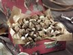 Chex® Chocolate Malt-Cherry Mix