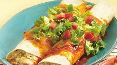 Spicy Chicken Enchiladas Recipe