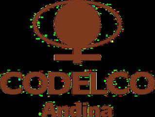 Codelco andina