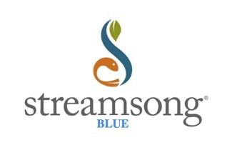 Streamsong Resort (Blue)