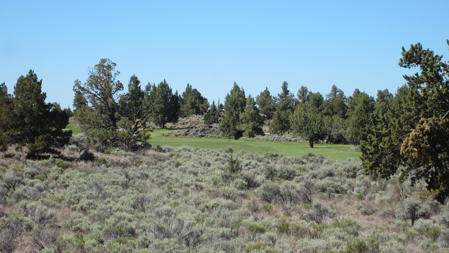 Pronghorn (Nicklaus) 6th zoom