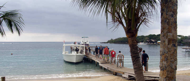 Divemaster interns loading the morning the dive boat