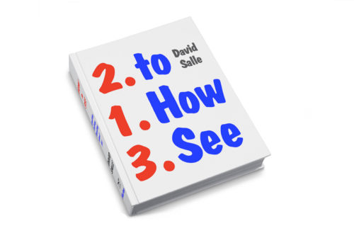the-get-how-to-see-david-salle