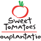 Havana Banana Salad from Sweet Tomatoes and a review