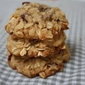 Cook Book Recipe Review: Orange Cranberry Oat Cookies