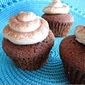 Chocolate Gingerbread Cupcakes with Cinnamon Frosting