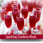 Sparkling Cranberry Blush Cocktail