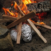 Giggling Gourmet's Campfire Baked Potatoes
