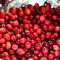 Quick and Easy Cranberry Orange Relish