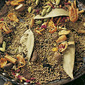 Garam masala Hot spice mix