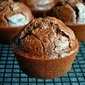 Chocolate Love~Chocolate Chunk Ricotta Muffins