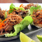 Mexican Pressure Cooker Recipes: Carnitas - Pulled Pork