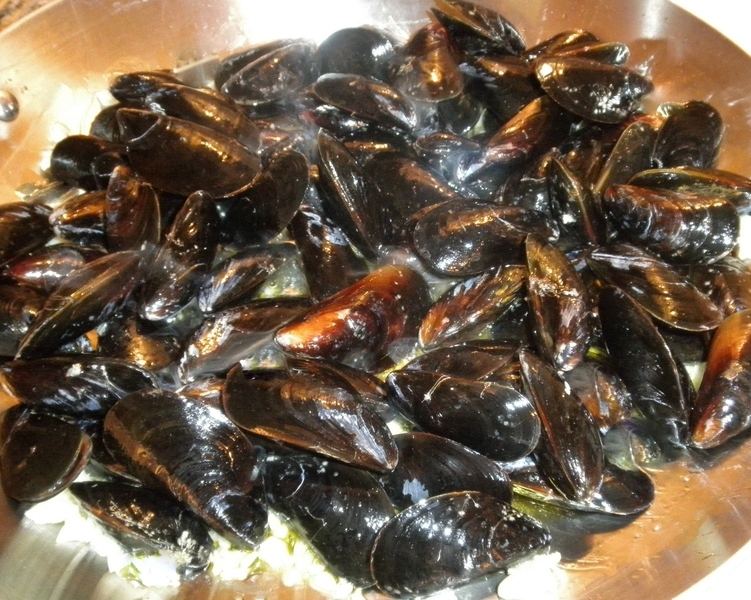 MUSSELS WITH FENNEL Recipe by Cecelia - CookEatShare